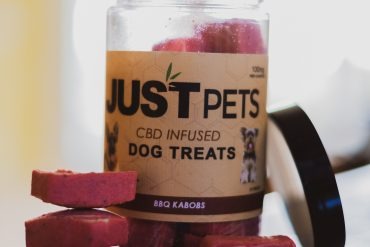 WHAT CBD PRODUCTS SHOULD I GIVE TO A DOG OR CAT?