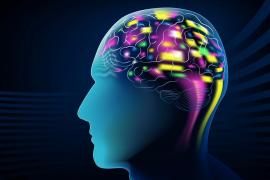 CBD Oils for Brain Health