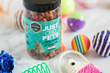 CBD Treats to Relax Both You and Your Pet